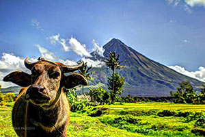 Mayon Park in UNESCO's shortlist of World Heritage Sites