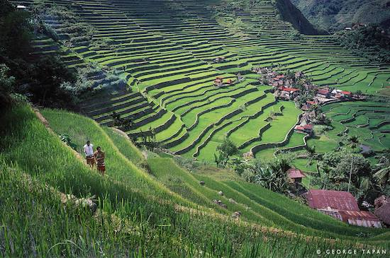Banaue Rice Terraces access now faster via Clark