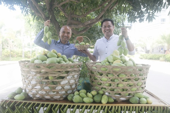 Megaworld's 'The Mactan Newtown' cultivates own 'Mango Festival'