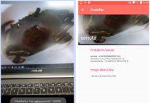 De La Salle University Crab mobile app