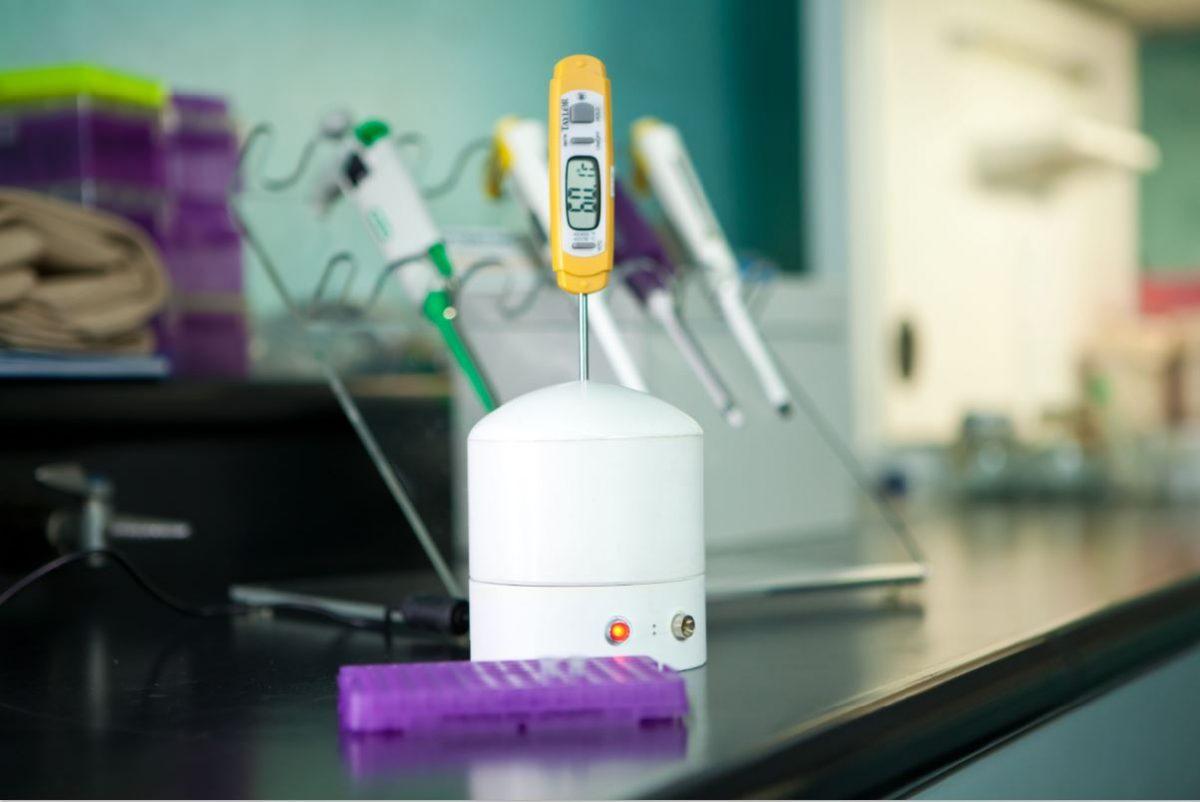 UP Dengue Test Kit