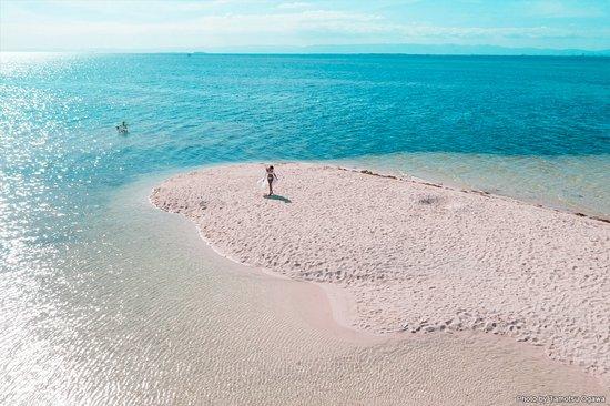 Cebu Island Tripadvisor Trending Destination