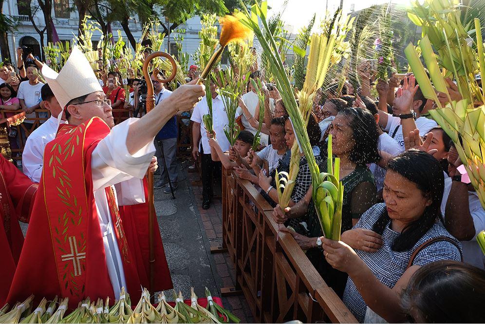 Catholic Palm sunday