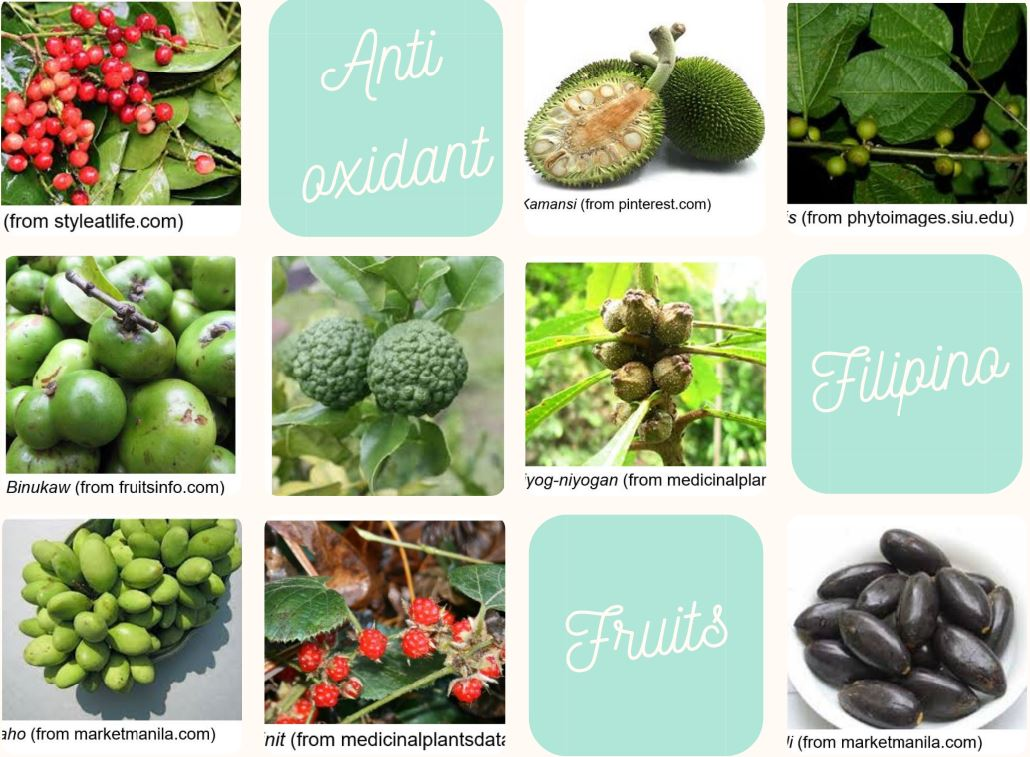 Philippine Fruits Disease-Fighting Antioxidants