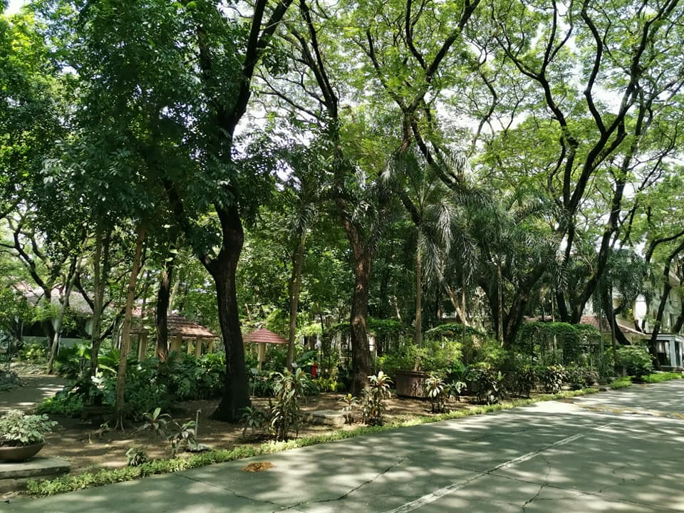 Philippine University GreenMetric World University