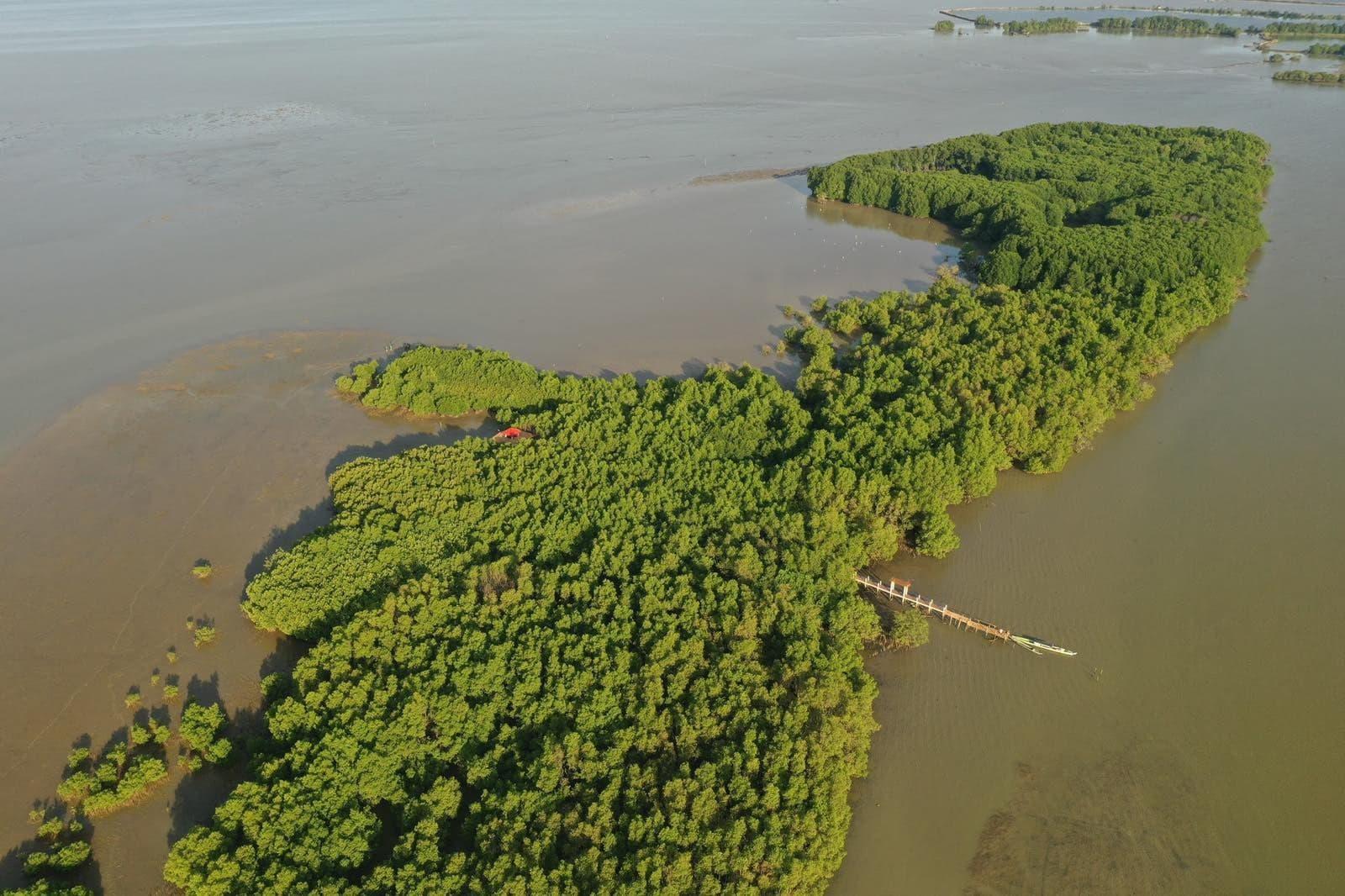 Sasmuan Pampanga Costal Wetland