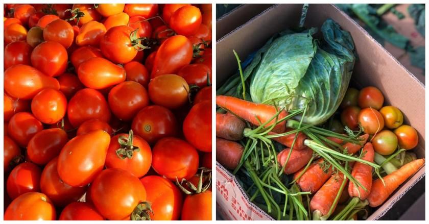 Filipino social enterprises sell fresh produce