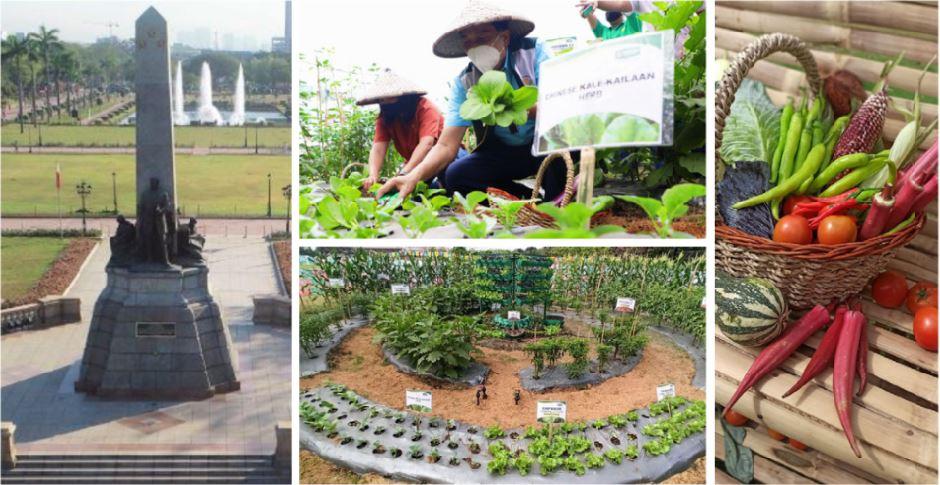 Manila's Rizal Park Edible garden blooms