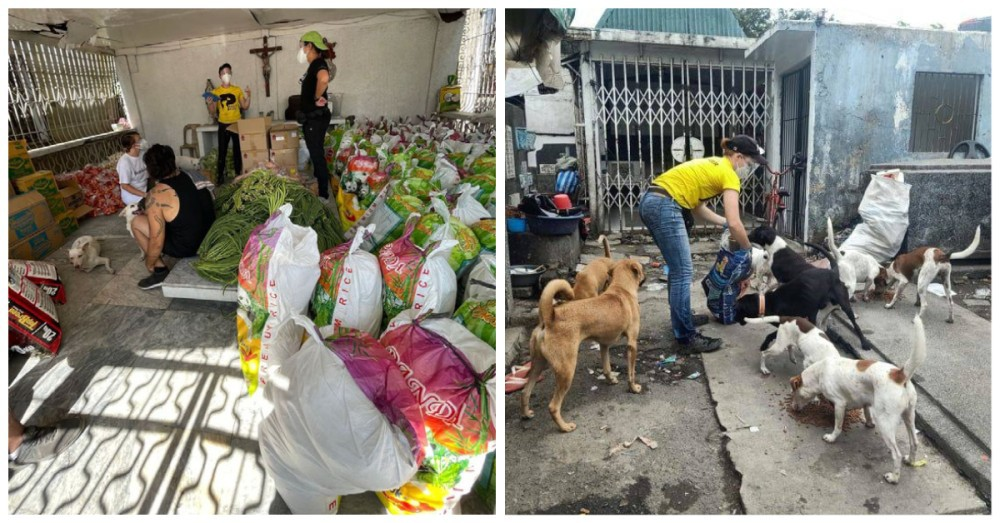 Animal rescuers Filipino families