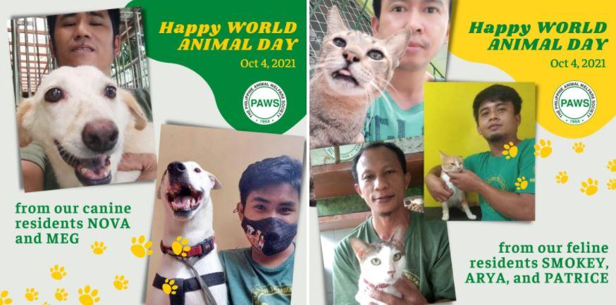 Philippine Animal Welfare Societ World Animal Day